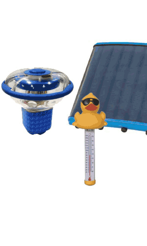 Pool Accessories Systems for South Carolina