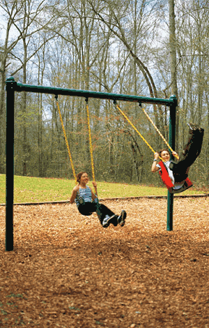 Swing Sets Systems for Washington DC