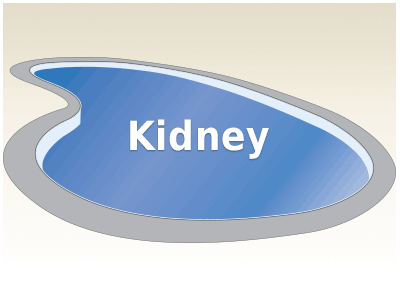Kidney Fiberglass Pools Kits