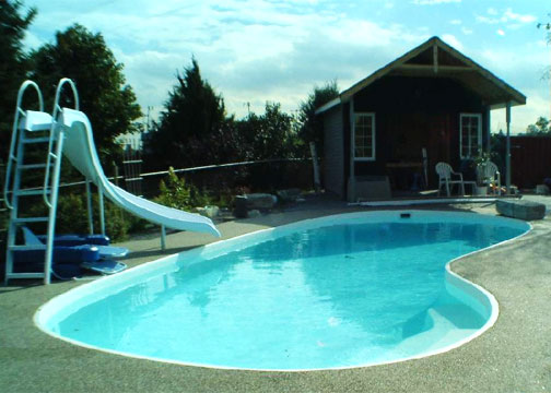 Medium Kidney Fiberglass Pool - Manatee Deep